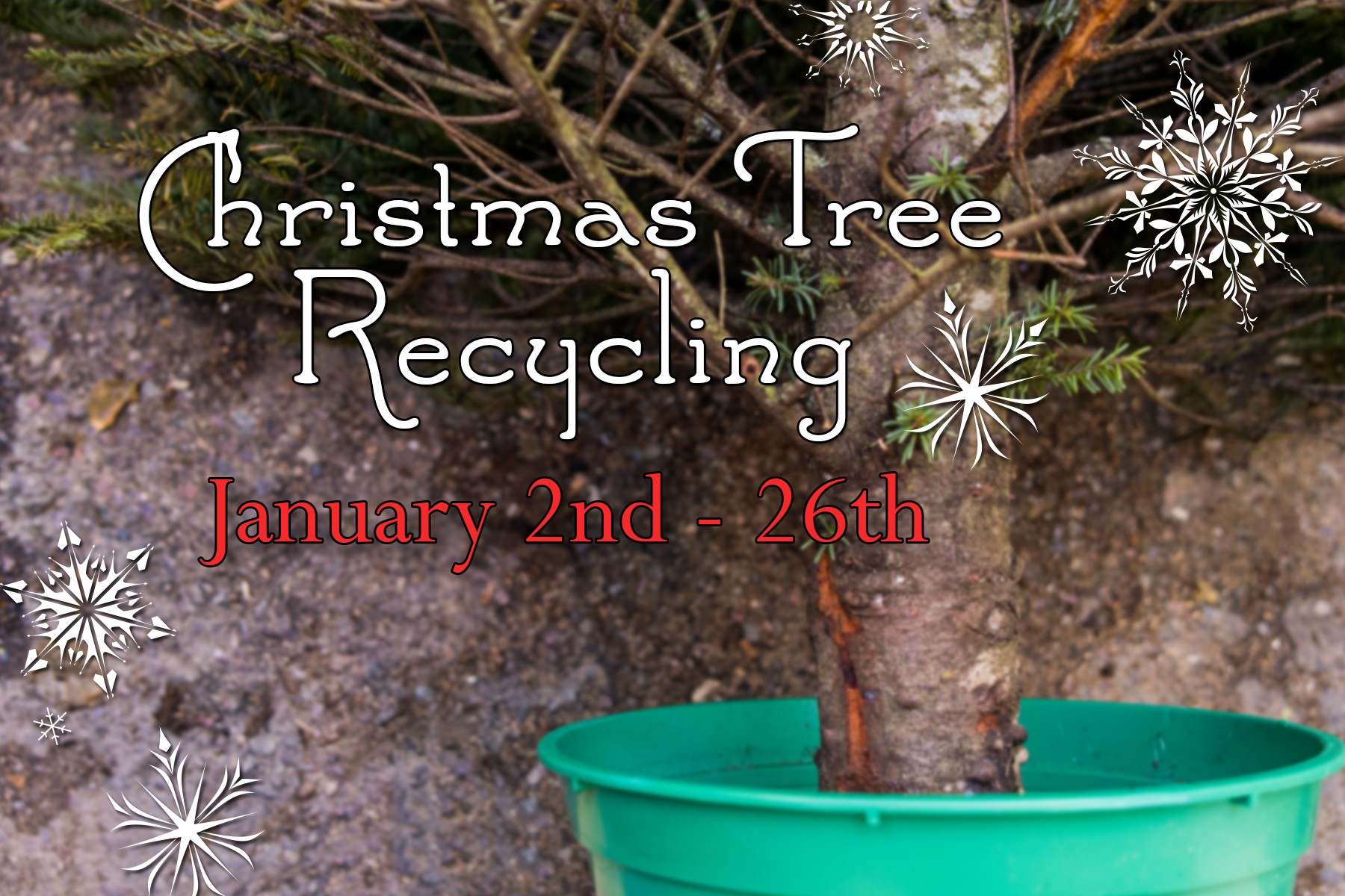 Christmas-Tree-Recycling-2017