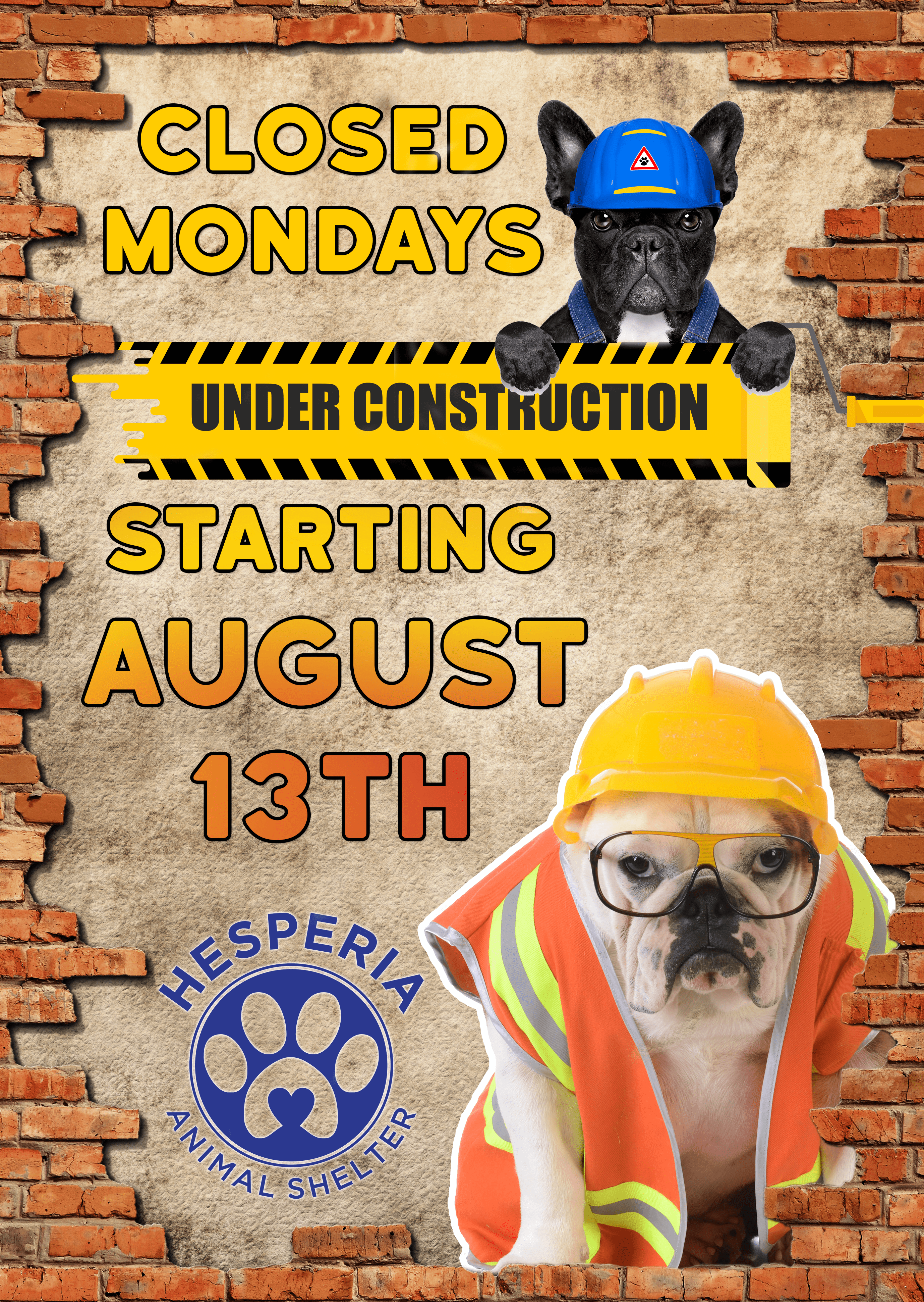 Animal-Shelter-Construction-Flyer
