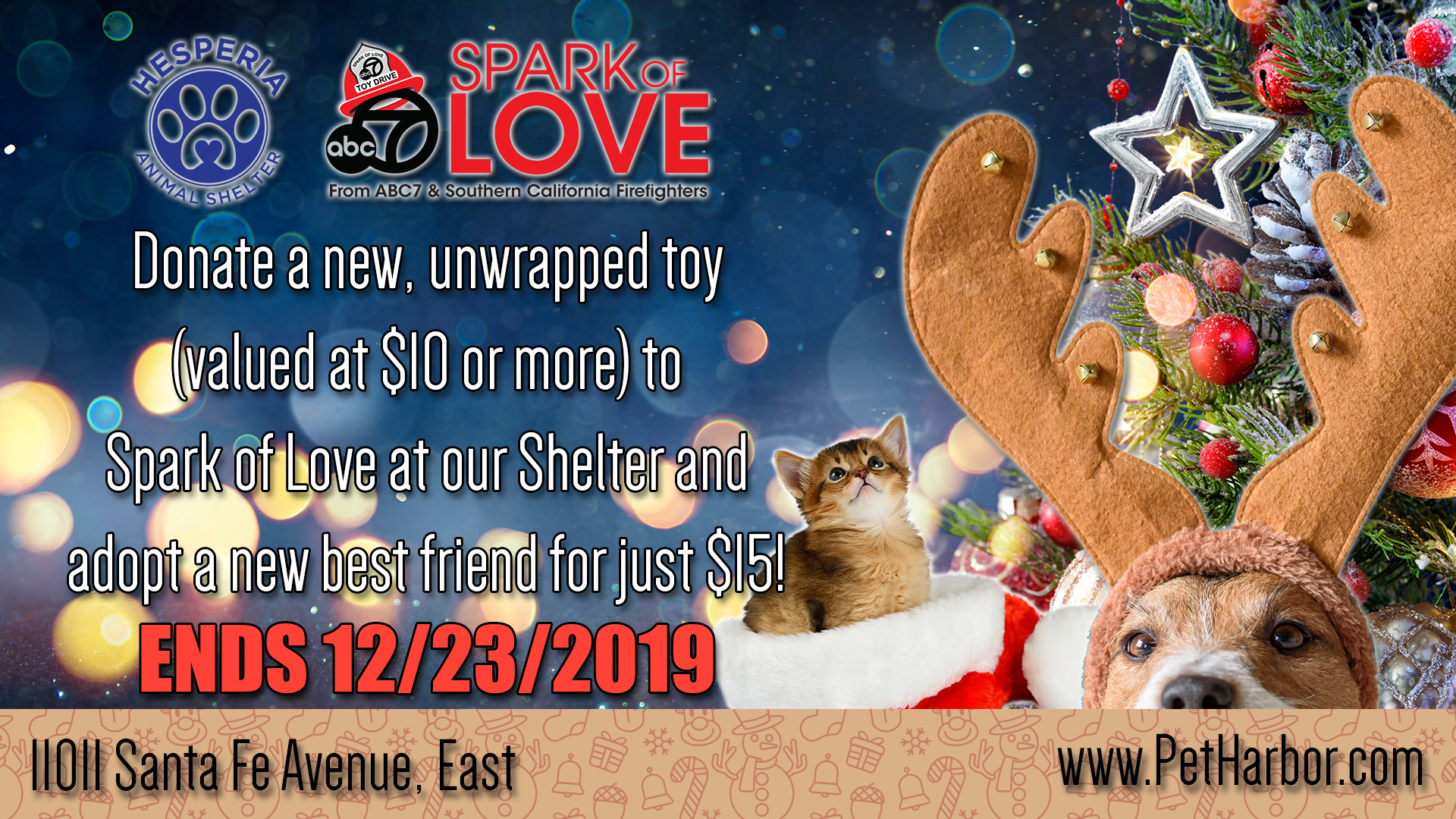 2019-Spark-of-Love-Adoption-Ad