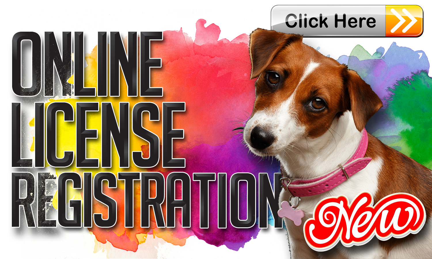 Animal-Control-Dog-License-Registration